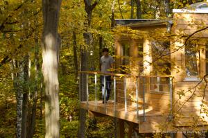 Apartamenty w drzewach na drzewach drewno