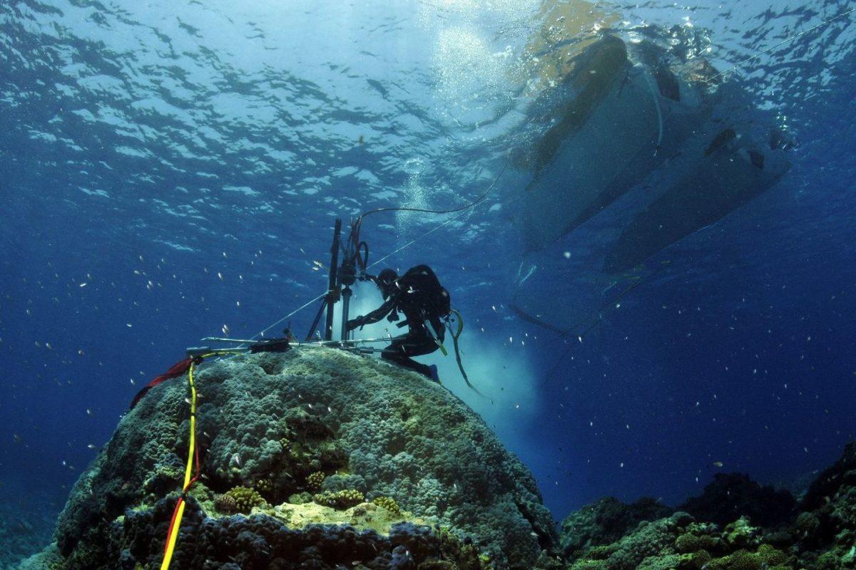 globalne ocieplenie pobieranie probek koralowcow
