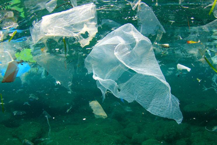 plastikowe torby w wodzie
