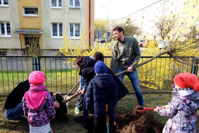 konferencja-neutralna-dla-klimatu-sadzenie-drzew