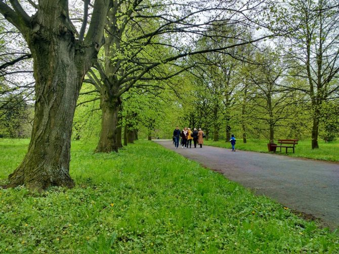 miasto-bez-smogu-zielen-park